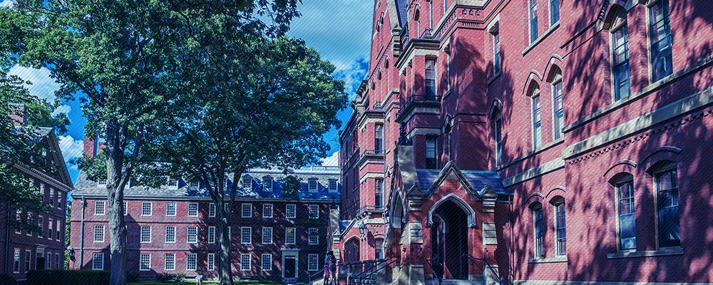 ハーバードケネディスクールで<br>人気のリーダーシップ講座 <br>アダプティブリーダーシッププログラム